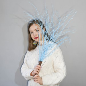 Бетула голубая