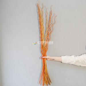 Декоративные ветки