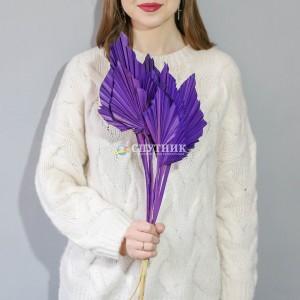 Копье фиолетовое
