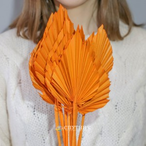 Копье оранжевое