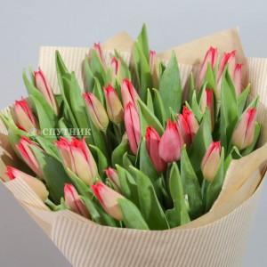 Букет тюльпаны красные 30 шт / 1'900 руб