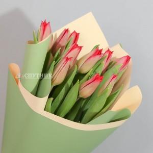 Букет тюльпаны красные 10 шт / 690 руб