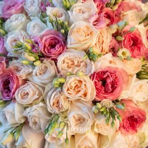 "Букет 115 роз ""Мечта"" / 19'000 руб"
