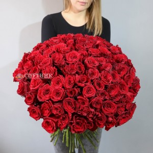 Букет 101 роза Эксплорер / 16'200 руб