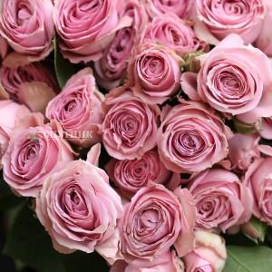 Хит! Букет 50 кустовых роз Пинк Иришка / 5'550 руб