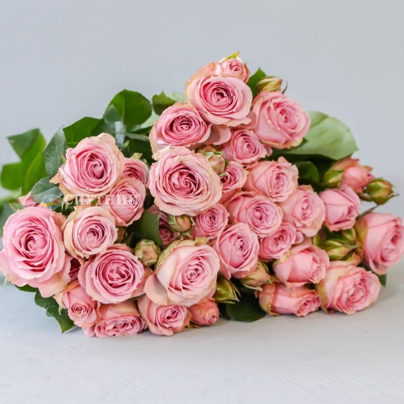 Купить розовую кустовую розу Пинк Иришка оптом и в розницу в СПб