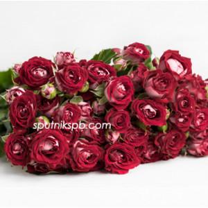 Кустовая роза B-Bubbles