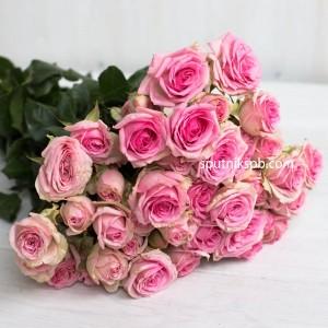 Роза кустовая Dinara