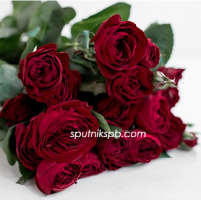 Кустовая роза Ruby
