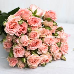 Кустовая роза Sweet Sara