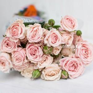 Кустовая роза Sweet